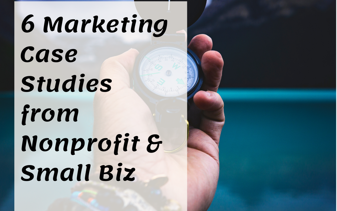 6 Marketing Case Studies from Nonprofit & Small Biz